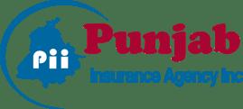 Punjab Ins. Agency  Logo