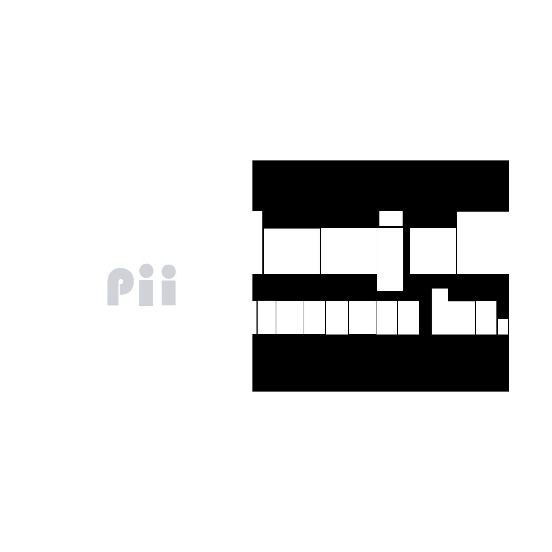 punjab-insurance-LOGO-inverse